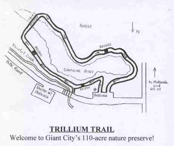 TrilliumTrl